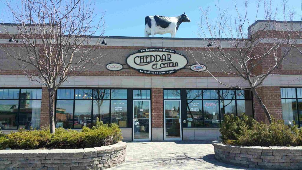 Vache extérieure avec bâtiment - Cheddar EtCetera